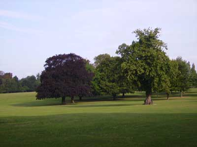 Cheam Park and Cheam Recreation Ground