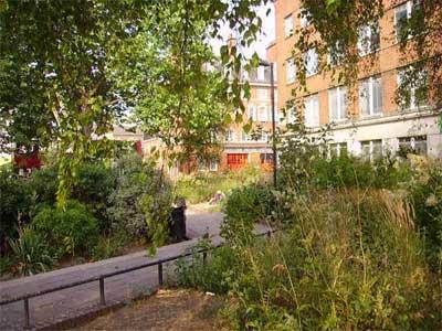 Emma Cons Garden