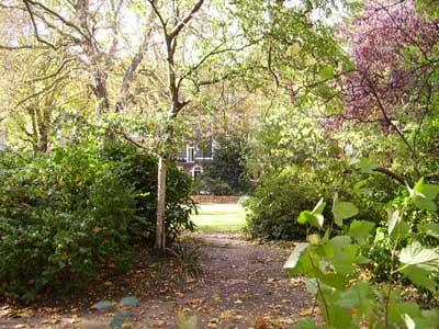 Hans Place Garden *