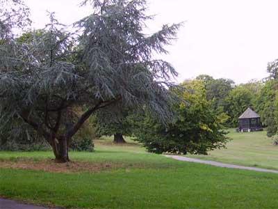 Hillyfields Park