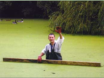 Removing duckweed from Waterlow Park