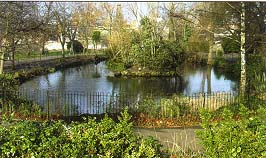 The ornamental pond at Ruskin Park is one of the original features