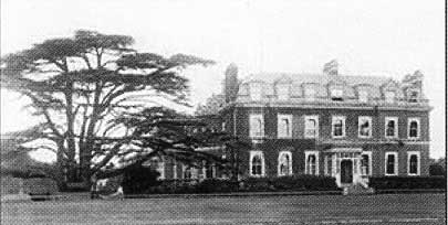 Spring Grove House and the original cedar tree