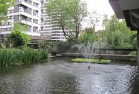 The Water Gardens *