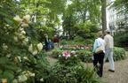 Rutland Gate South Garden and Upper Garden