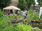 St Quintin's Community Kitchen Garden