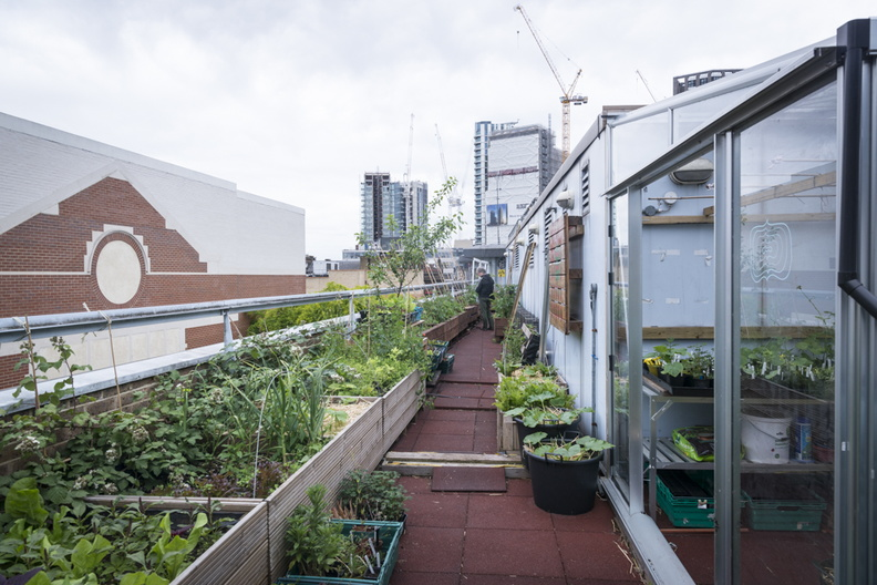 Providence Row Rooftop Garden