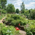 King Hentry's Walk Garden