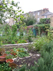 Walworth Allotment Association