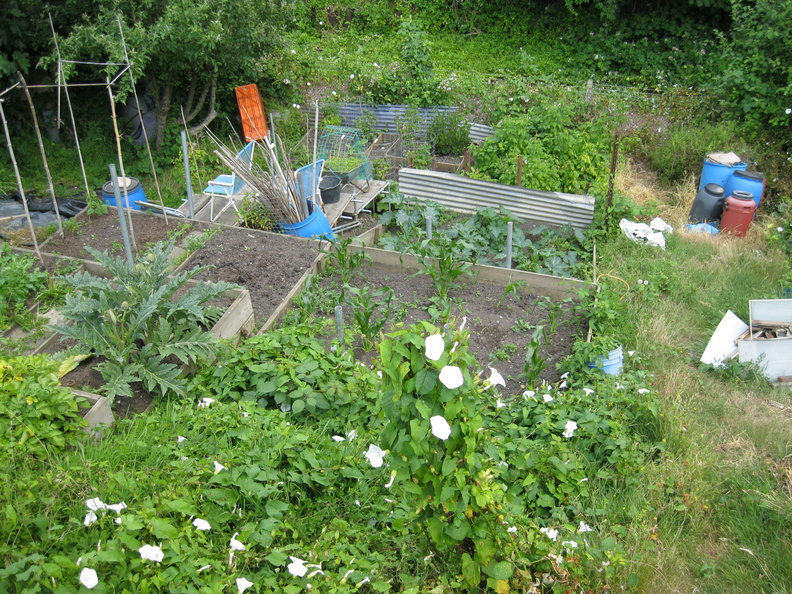 Arvon Road Allotment Group
