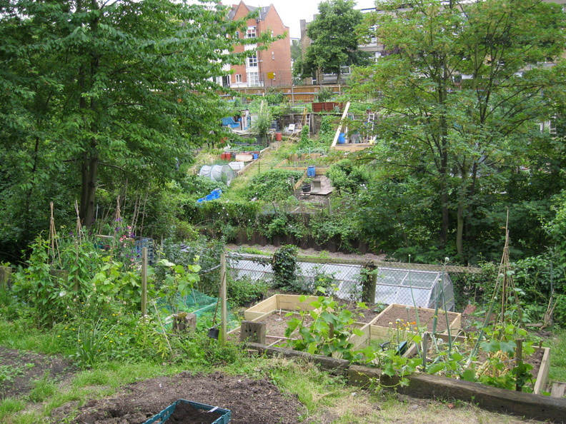 Arvon Road Allotment Group - View from the Olden Garden