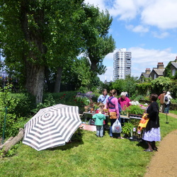 St Paul's Churchyard and Eden Community Garden
