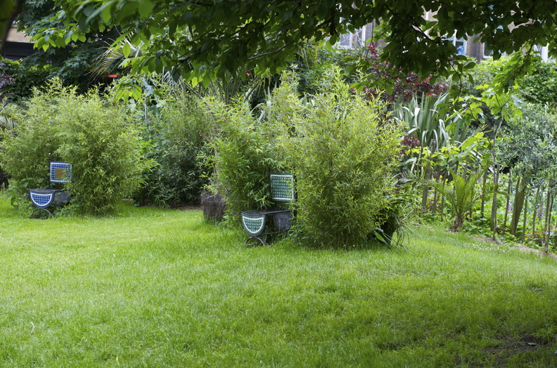 Meanwhile Gardens - Version 2 (4).tiff.jpg
