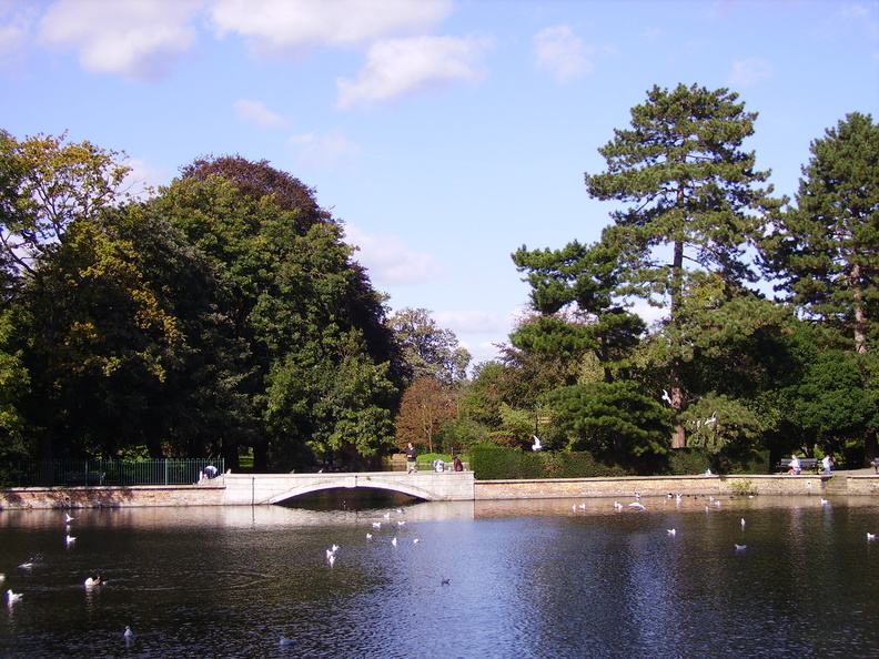 Carshalton Ponds - East Pond and Leoni Bridge