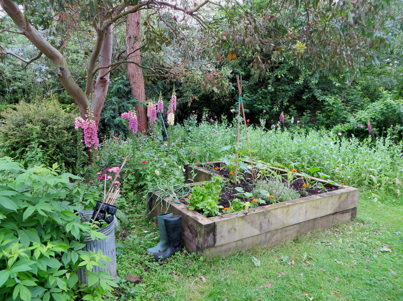 Springfield Hospital (SHARE Community Horticulture Project)