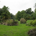 Battersea Park - Sub-tropical Garden