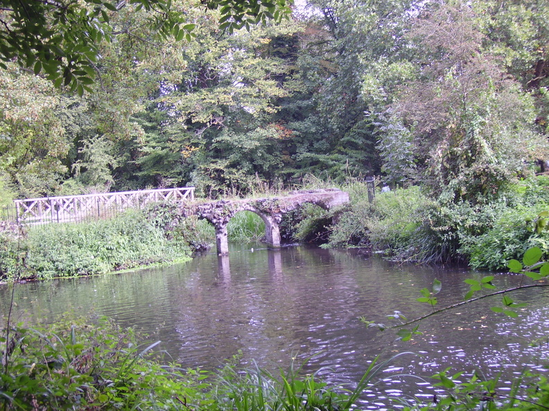 Morden Hall Park - River Wandle