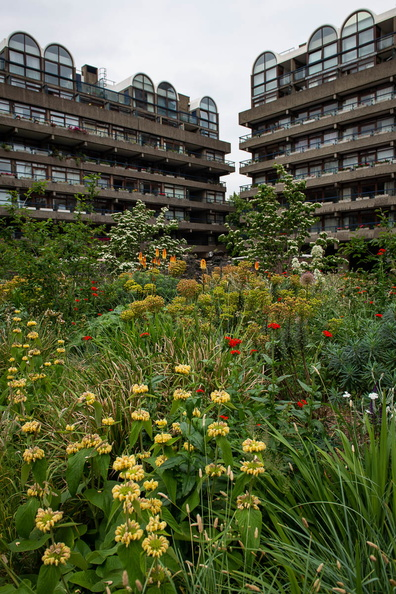 Beech Gardens, the Barbican Estate © Graham Willson 2.jpg