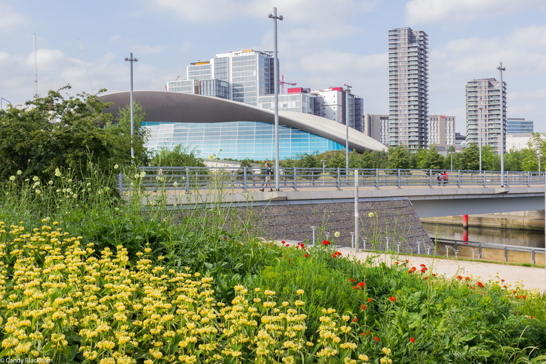 Queen Elizabeth Olympic Park © Candy Blackham 3288.jpg