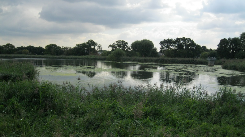 Woodberry Wetlands (East Reservoir)
