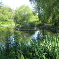 Ruskin Park - Ornamental Pond