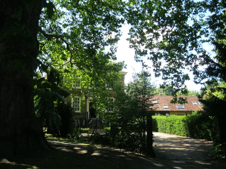 The Old Rectory and part of plane tree