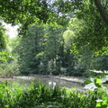 The Mill Pond, Dulwich
