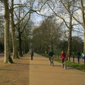 Green Park - Constitution Hill