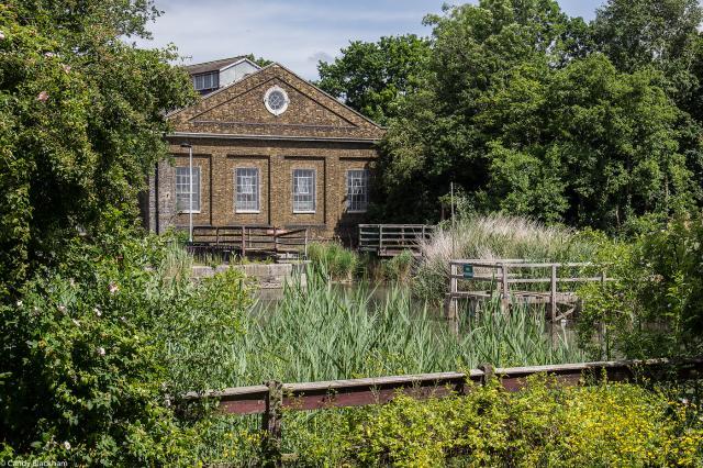 Lavender Pond Nature Park